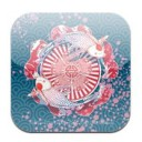 Feng Shui Calender 2011 App