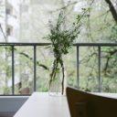 Feng Shui und Pflanzen