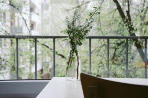 Frische Blumen speichern Energie (Foto: Dominik Martin, unsplash.com)