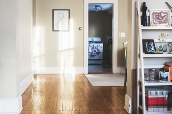 Ein friedliches Zuhause – ohne Löcher, ohne Stress (Foto: Kari Shea, Unsplash.com)