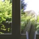 Den Durchblick behalten – Fenster und Energie nach Feng Shui